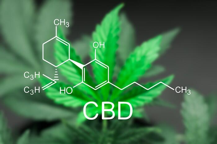The Basics of Cannabis & CBD – (Part 2) - tolktalk