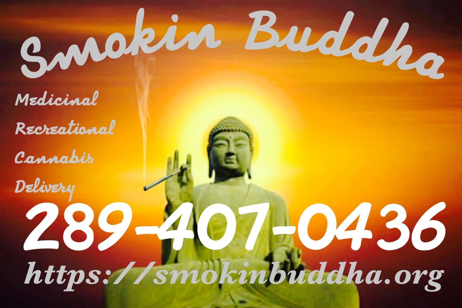 Smokin Buddha   Store