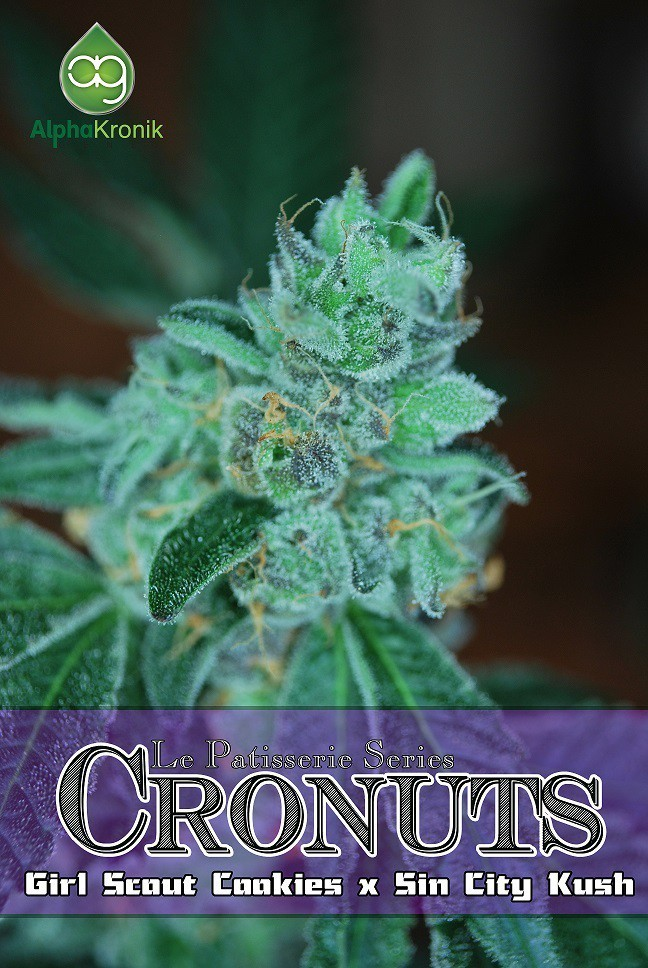 Cronuts - hybrid Strain - tolktalk